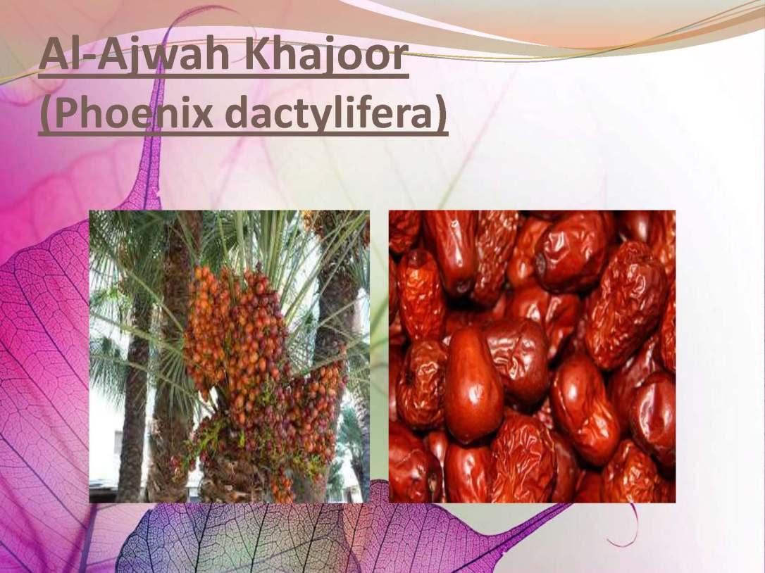 tibenabawi1-140330103317-phpapp01_Page_06