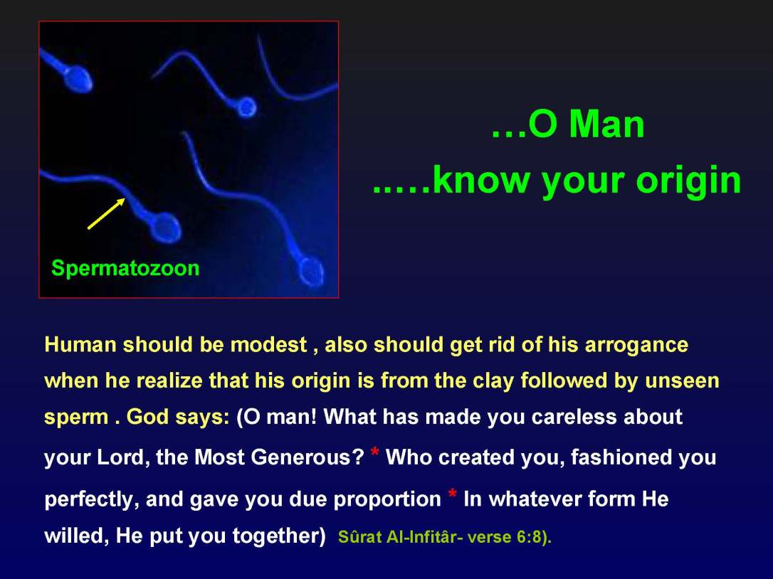 creationofhumananebmofwhatwritten1431yearagoinquran-100827064353-phpapp01_Page_07