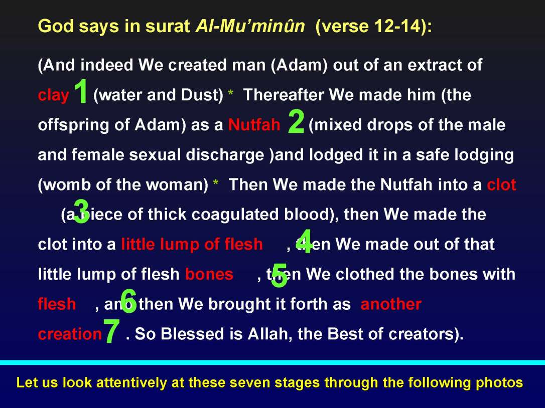 creationofhumananebmofwhatwritten1431yearagoinquran-100827064353-phpapp01_Page_11