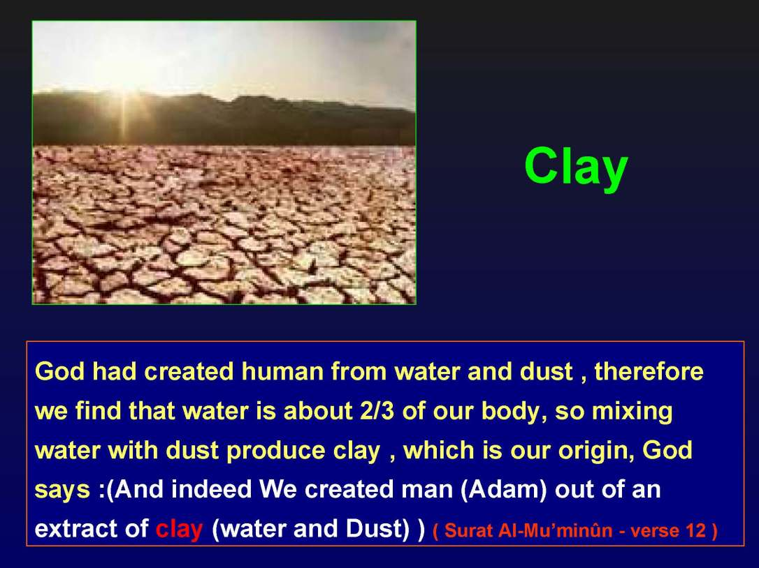 creationofhumananebmofwhatwritten1431yearagoinquran-100827064353-phpapp01_Page_13