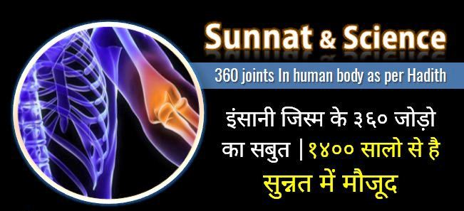 360-joints-In-human-body-as-per-Hadith