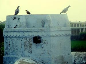 Broken-minaret-on-the-tomb-of-Khwaja-Hujjatullah