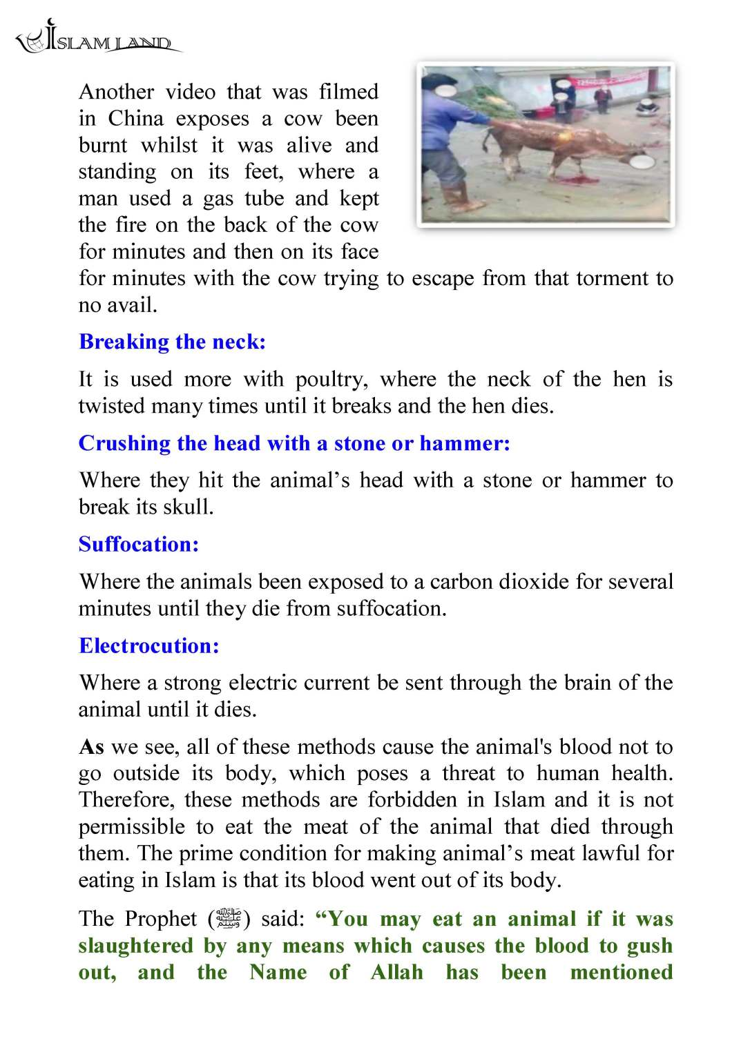 en_ANIMAL_RIGHTS_IN_ISLAMIC_CHRISTIAN_AND_JEWISH_SHARIA_LAW_Page_36