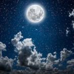 moonlight_282