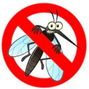 mosquito_282