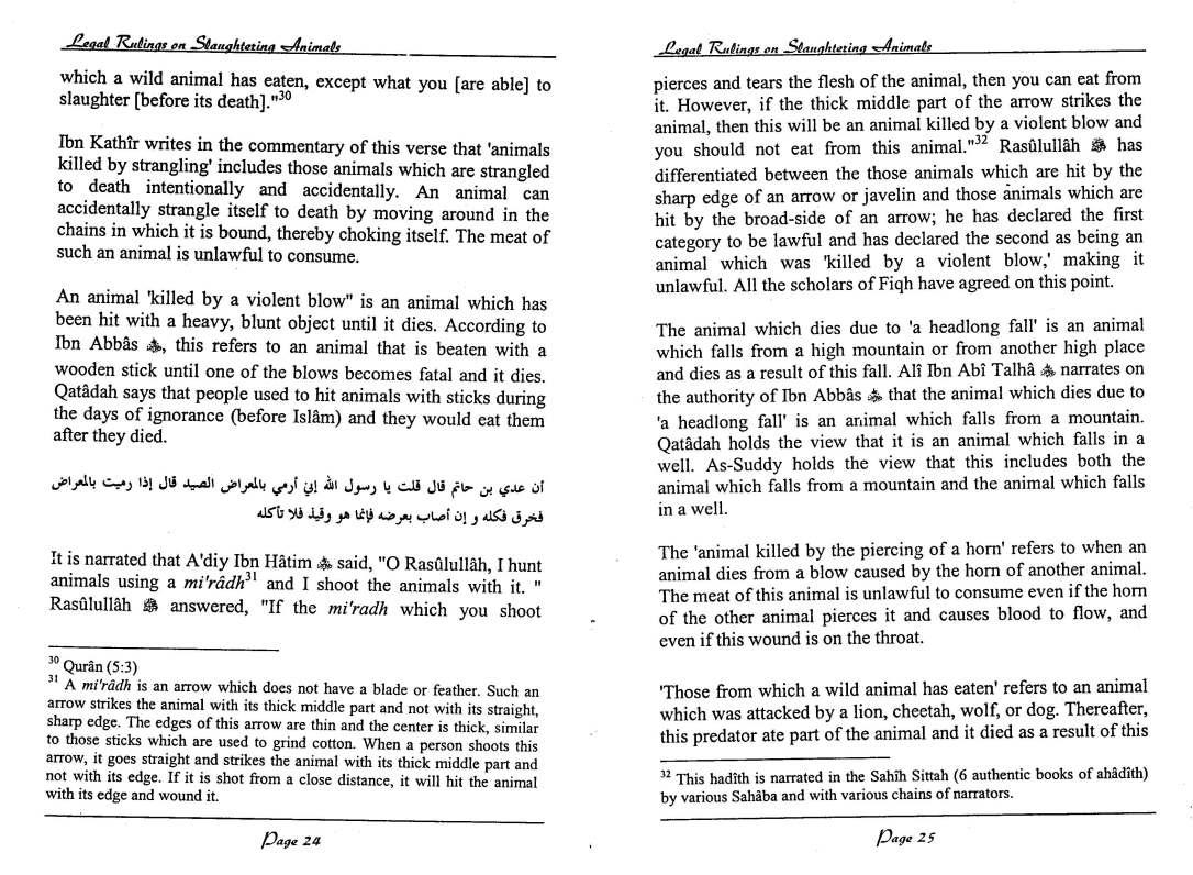 English-InIslamLegalRulingsOnSaughteredAnimal-MuftiTaqiUsmani_Page_13