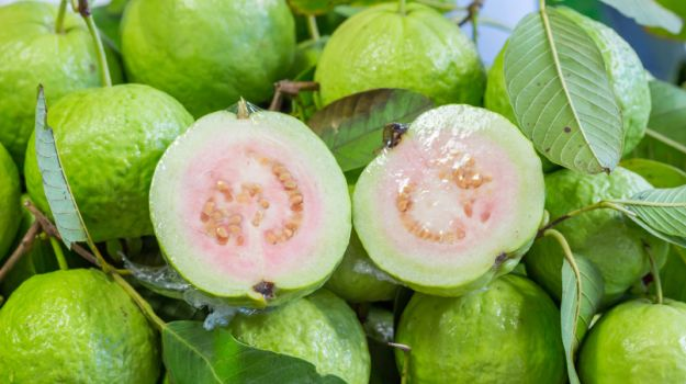 guava-benefits