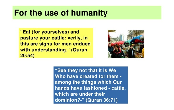 islam-and-the-environment-8-728