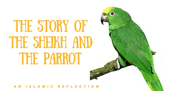 The-Story-of-the-Sheikh-and-the-Parrot