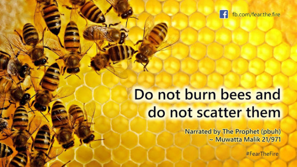 do-not-burn-bees-nor-scatter-them