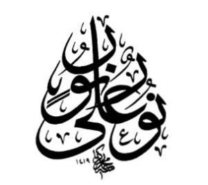 light-upon-light-mohamed-zakhariah