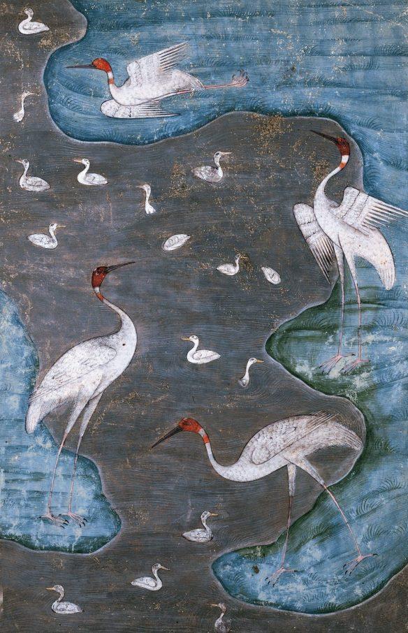 le-cantique-des-oiseaux-de-farid-od-din-attar-989-1000x1552-1